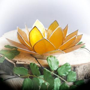 Lotus Geel