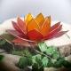 Lotus Oranje