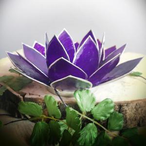 Lotus Paars