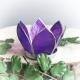 Lotusbloem klein paars