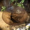 Fonteinschaal glas Roze/bruin B